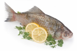 ist2_5535980-raw-fish-with-lemon-and-parsley