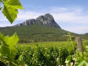 Pic St. Loup, the mountain that gave its name to an AOC Languedoc designation.  (Photo courtesy of bilingue.iesvegadelturia.es)