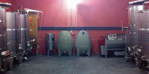 The vessels in place at Domaine de Joncas