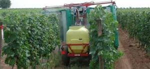 I don't know what's being sprayed on the grapevines here, but some producers I've met use an apparatus like this for applying fungicide, which they may apply after a period of wet weather.