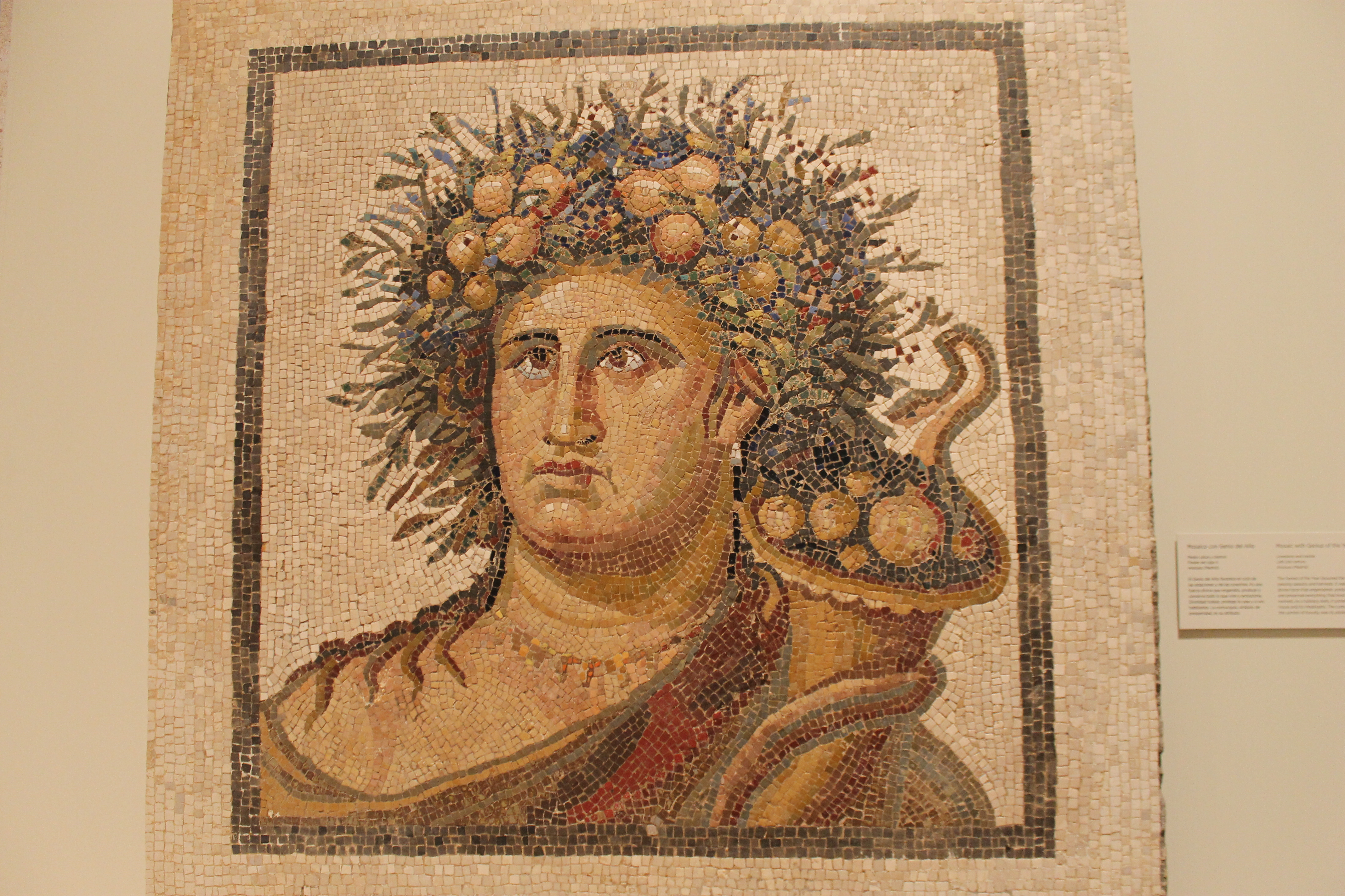 wine drink roman gods food mosaic genius protection watched inhabitants villa spirit which extended including found firstvine